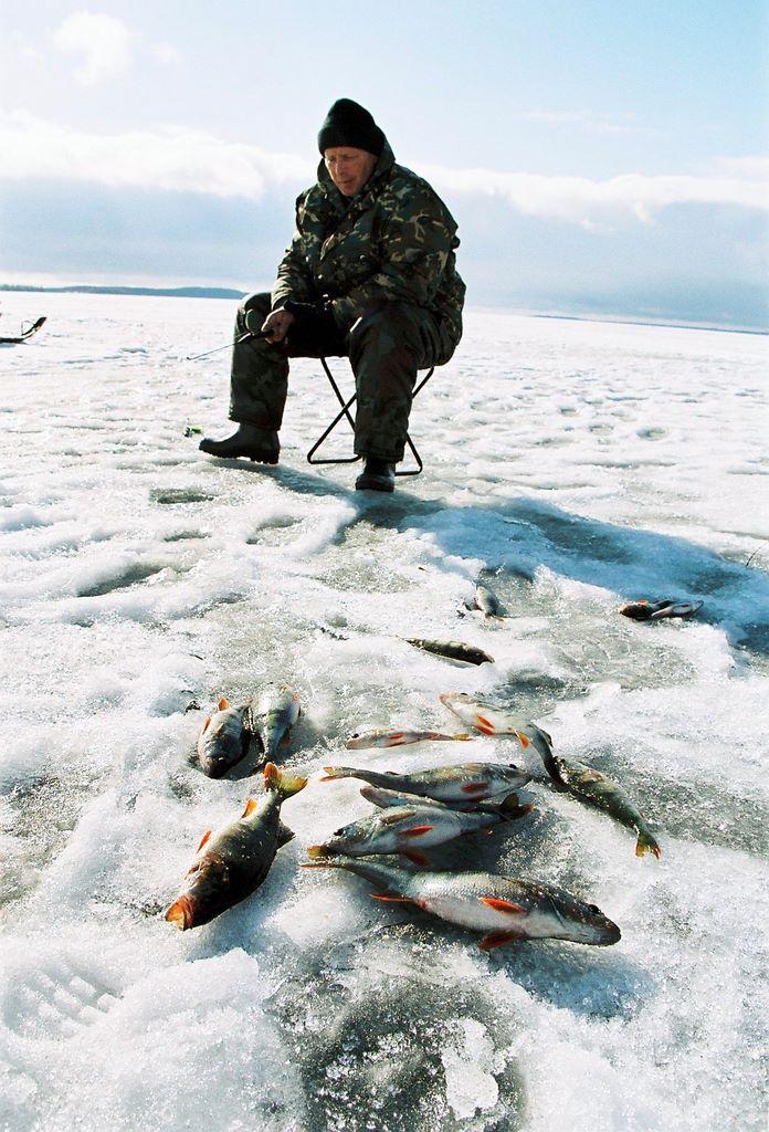 скачать зимняя рыбалка propilkki 2